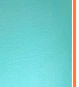 "I chose Naugahyde vinyl in ""Ocean"" and ""Marmalade"" shades."